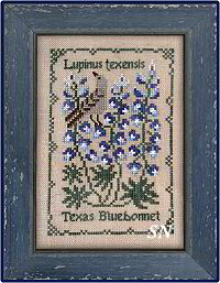 Botanical Stitches - Lupinis texensis - Texas Bluebonnet from The Drawn Thread -- click to see more