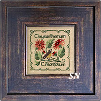 Botanical Stitches - Chrysanthemum from The Drawn Thread -- click to see more