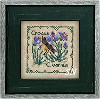 Botanical Stitches - Crocus from The Drawn Thread -- click to see more