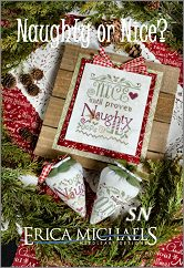 Naughty or Nice from Erica Michaels - click for more